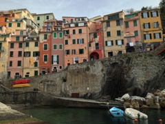 Houses squished together in Riomaggiore's compact harbor