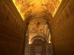 Beautiful ceiling; Archiginnasio of Bologna