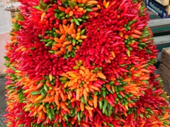 Colorful chili peppers for sale; Rialto Market