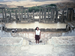Admiring the magnificent Dougga Theater (capable of seating 3500 spectators) mere minutes after a torrential rain storm