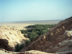 One final view of Tamerza