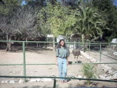 Becky and an ostrich at the Tunis Zoo