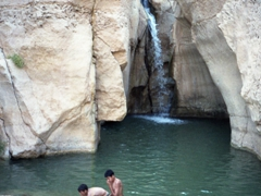 Tunisian boys taking a dip at the Chebika waterfall oasis