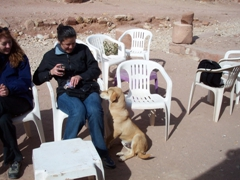 A dog begs Becky for some of her mint tea; Petra