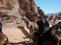 Our cameleers resting their animals; Wadi Rum