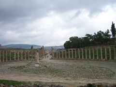 The colonnade of the Oval Forum; Jerash