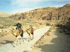 Camels for hire with Royal Tombs in the background
