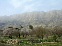Iran's picturesque countryside