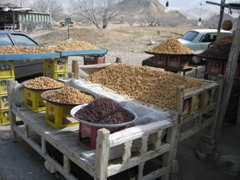 A stop to look at some of the dried fruit and nuts for sale at this roadside vendor's stand