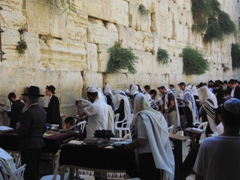 The men's only section of the Western Wall; Jerusalem