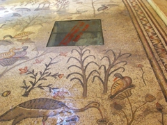 More floor mosaics inside the Church of the Multiplication of Loaves and Fishes; Tabgha