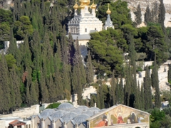 View of the gold onion domed Church of Mary Magdalene and the Church of All Nations; Jerusalem