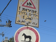 Interesting signpost in Old Akko, where horses are not allowed into the town center