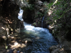 Banias Nature Reserve draws in huge crowds of locals and tourists alike who come to seek a bit of tranquility in this peaceful park