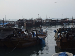 Lots of wooden fishing vessels in the harbor