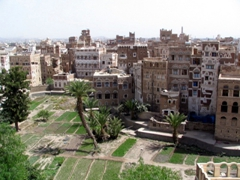One of Sana'a many garden oases