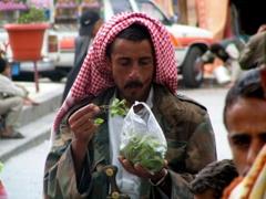 Yemeni man chewing Qat (leafy mild stimulant)