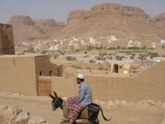 Donkey transport is a must for Al-Hajarain's narrow streets