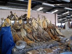 There is even a wide assortment of dried fish for sale; Dubai Fish Market