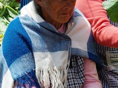 Indigenous woman at the market