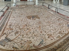 Floor mosaics in the Carthage Room