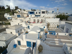 Rooftop view overlooking Sidi Bou Said
