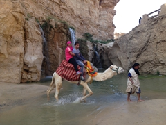 Camel ride at Tamerza's waterfalls