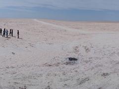 The vast emptiness of Chott el Jerid, an immense salt lake covering almost 5,000 sq km
