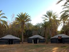 Our Ksar Ghilane camping tents