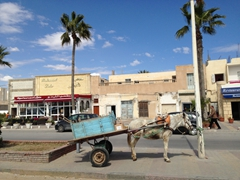 A donkey cart on the streets of Mahdia