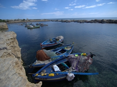 Fishing boats in Mahdia's harbor