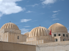 Domes of Zaouia of Sidi Amor Abbada