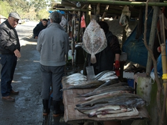 Roadside stop for fish (enroute to Batumi)