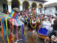 The Cuenca Carneval Parade was filled with a collage of colorful costumes and celebrating people