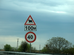 "There are lots of ""yield to cow"" signposts throughout Armenia"