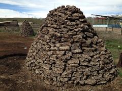 Fuel bricks (cow dung) in a remote mountan village